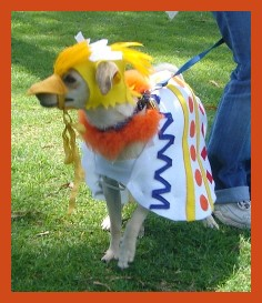 easter dog costumes