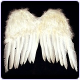 Child Feather Angel Wings Costume
