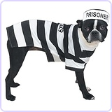 "Prison Pooch Costume for Dogs, 24"" XL"