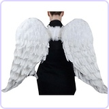 Angel Wing in White with Elastic Straps, 43 by 27-Inch