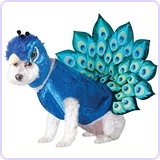 Peacock Dog Costume, Small