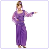 Girls' Dreamy Genie Costume Medium (8-10)