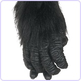 Gorilla Hands