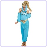 Dreamgirl Women's Genie In A Bottle Costume