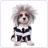 Beetlejuice Pet Costume, Medium