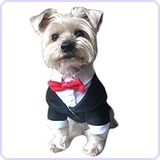Oscar Formal Tuxedo with Black Tie and Red Bow Tie, Medium