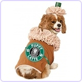Iced Coffee Pet Costume, X-Large