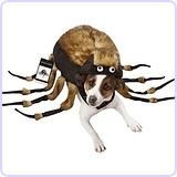 Fuzzy Tarantula Halloween Costume, Large
