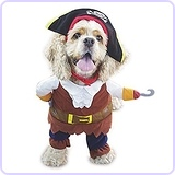 Dog Costume Pirates of the Caribbean Style, Small