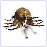 "Zack & Zoey Fuzzy Tarantula Costume for Dogs, 16"" Medium"