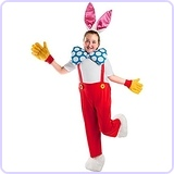 Child Framed Rabbit Costume