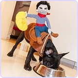 Dog Riders Cowboy Costume (XL)