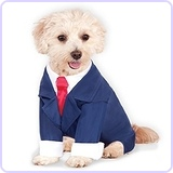 Business Suit for Pet, Small