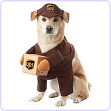 UPS Pal Dog Costume, Large