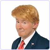 Mr. Billionaire Wig Costume Accessory