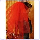 Lydia Deetz Veil Costume Accessory