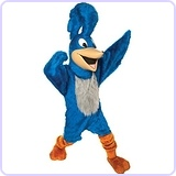 Road Runner Mascot Costume