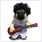 Dog Guitar Costume