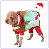 Dog Costume with Carrying Present Christmas