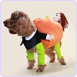 Dog Funny Cuddly Carry Pumpkin Illusion Costume (S)