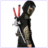 Dragon Ninja Weapon Set