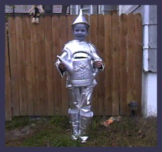 Wizard of Oz Tin Man Homemade Costume