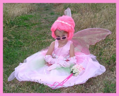 Homemade Fairy Costume