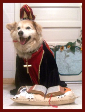 Dog in a pope costume